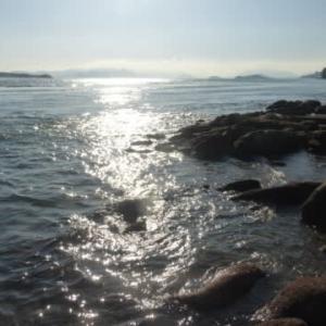 釣りシーズンもそろそろ終わり…瀬戸内秋景色シリーズ