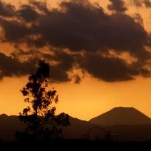 富士山が見える日が増えた?…多摩川冬景色シリーズ