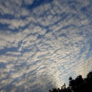 今年の冬…こんな雲がよく出るが