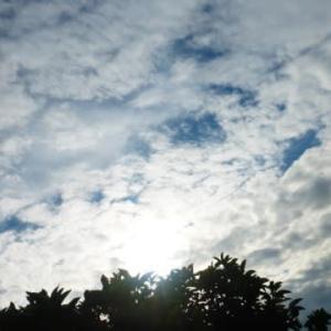 長雨の次は厳しい残暑?