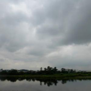 そろそろ梅雨明け…多摩川夏景色シリーズ