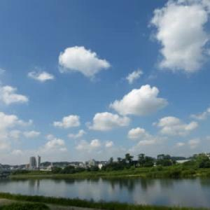 水辺は涼しい?…多摩川夏景色シリーズ