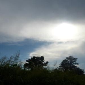 ときどき妙な雲が出る…多摩川夏景色シリーズ