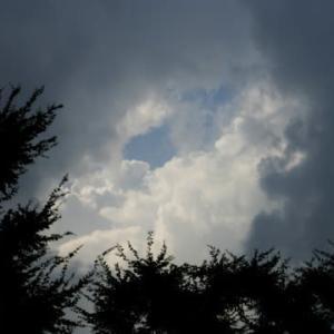 よくない天気になりそうだ…多摩川夏景色シリーズ