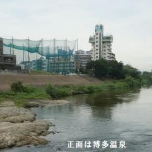 9月度例会「那珂川沿いを歩く」(福岡市博多区)