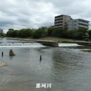 高宮の文化探訪と河畔ウォーキング(福岡市中央区高宮校区)