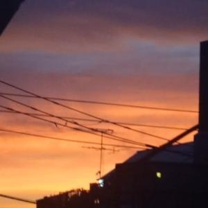 虹と朝焼け