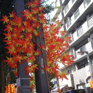 商店街の秋