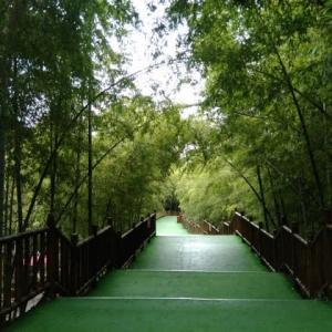 宜興  陶祖聖境風景区(慕蠡洞)