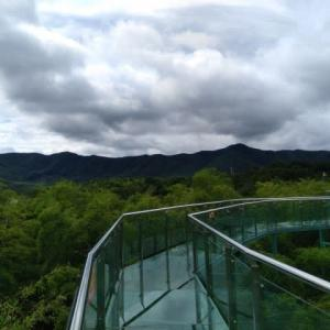 宜興  陶祖聖境風景区(竹尖長廊)