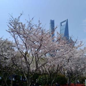 蘇州 現在の上海から蘇州への移動