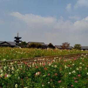 無錫 禅意小鎮 拈花湾(nian hua wan)