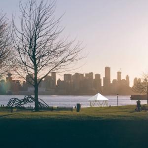 フォレストドームのある風景〜大都会を望む対岸の公園から