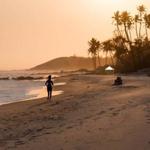 フォレストドームのある風景〜浜辺でランニング、フォレストドームまでもう少し