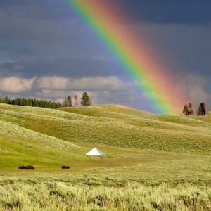 フォレストドームのある風景〜雨の後にはレインボー、草原との対比が鮮やか