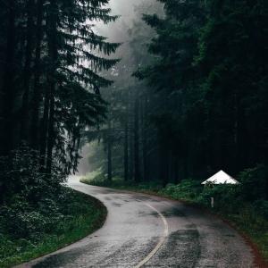 フォレストドームのある風景〜雨降る森の中のフォレストドーム、森への入口