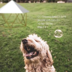 フォレストドームのある風景〜ワンOneday@柏の葉T-SITE,10/25開催です!