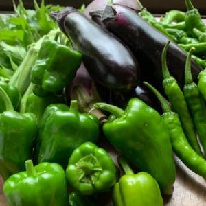 「夏野菜の片付け」