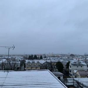 「2020年初積雪」