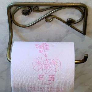 「書けない漢字、読めない漢字」