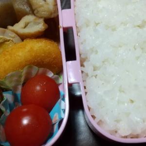 おはよう✨☀️ございます。今日のお弁当。