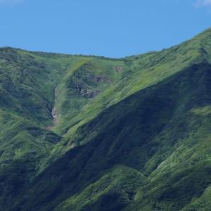 裏越後三山を愛でる山旅 魚沼市・道行山 その5 下山