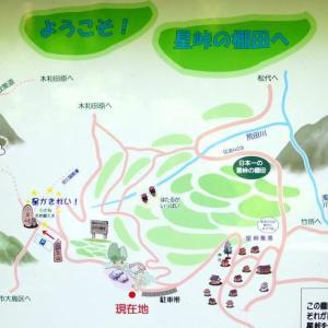 9月12日 星峠の棚田~星と森の詩美術館~山本山のそば畑 その2