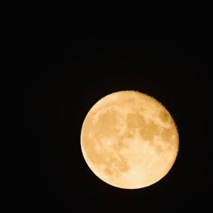 利尻島のお月様