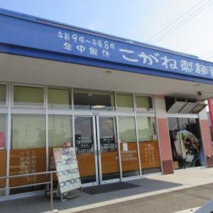 愛媛県  こがね製麺所 西条店
