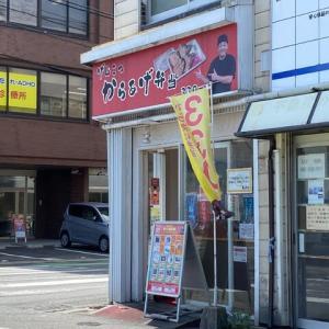 筑紫野市 博多とよ唐亭 二日市店