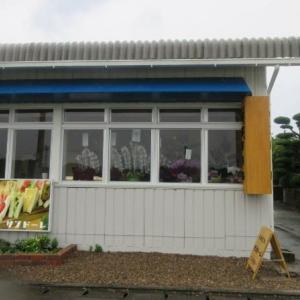 糸島市  サンドウィッチ サンドーレ