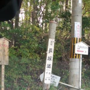京北 常照皇寺へ