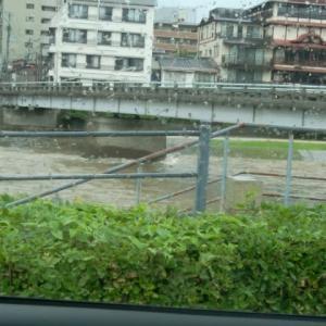 濁流 泥の河?