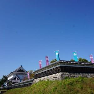 長岡京 勝竜寺城跡公園~恵解山(いげのやま)古墳~長岡天満宮