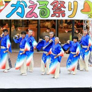 第10回堺よさこいかえる祭り よさこい踊り「さい」