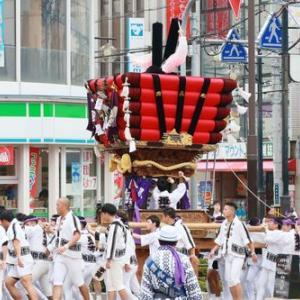 2019年貝塚市太鼓台祭り (近木町太鼓台)