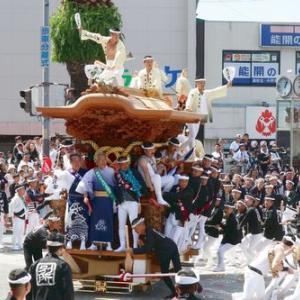 2019年岸和田だんじり9月祭礼 (別所町)
