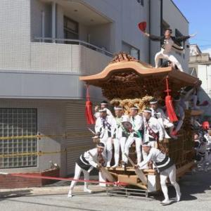 2019年岸和田だんじり9月祭礼 (並松町)