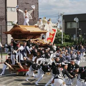2019年東岸和田だんじり祭(10月祭礼)試験曳き 八田町