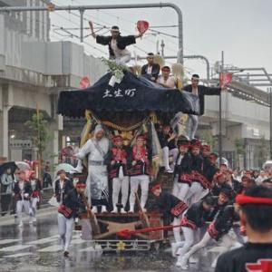 2019年東岸和田だんじり祭(10月祭礼)宵宮 土生町