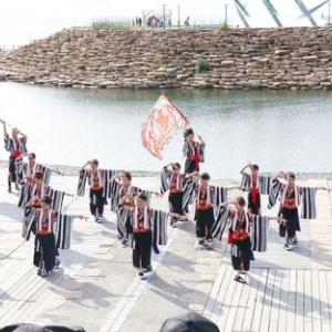 第16回泉州YOSAKOI ゑぇじゃないか祭り 夢色歌留多
