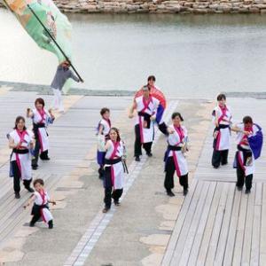 第16回泉州YOSAKOI ゑぇじゃないか祭り 舞心座 蒼