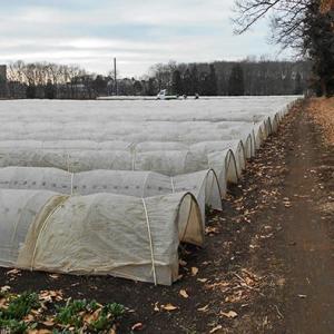 農村冬景色 畑作農村の色