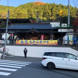 御嶽駅→御岳山→日の出山→金比羅尾根&カフェ♪