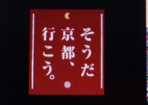 JR東海の「そうだ 京都行こう。」のホームページにミモロデビュー。毎月、京都案内をすることに