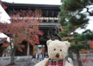 紅葉と共に楽しむ文化財「秋の京都特別公開」。「黒谷 金戒光明寺」の山門、庭園など