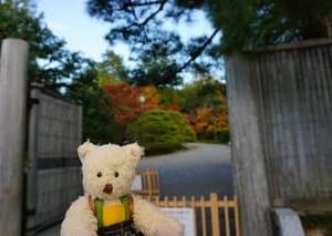 当日拝観整理券をゲットして、雄大な紅葉の景色が広がる「修学院離宮」へ