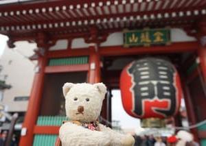 ミモロの東京旅の思い出。新年の福を願う東京の「酉の市」。秋のリポートです。
