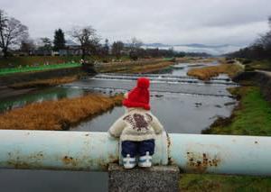 雨の「京都マラソン」。賀茂川沿いでは野鳥たちも応援。植物園で応援するミモロ