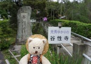 京都府丹波で巡る明智光秀の足跡。首塚のある「谷性寺」、開園が待ち望まれる「亀岡ききょうの里」
